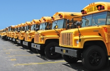 Row of several school buses parked next to each other